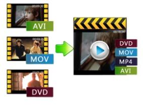 renee-دمج الفيديو1-1