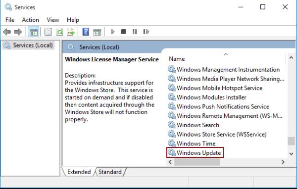 enable windows update