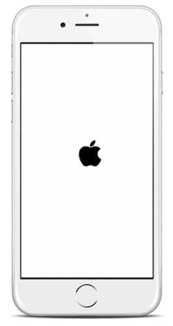 شعار أبل في iPhone